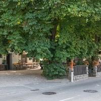 Gasthaus Murauer4