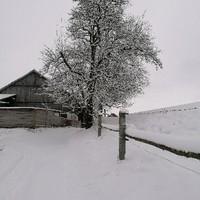 Wintereinbruch in Bergham