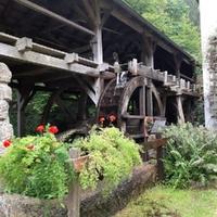 Aumühle - Binderalm
