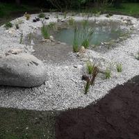 Gartengestaltung (11)