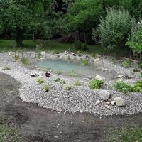 Gartengestaltung (12)