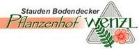 Pflanzenhof Wenzl GmbH.