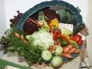 Gemüsehof Bau im Rath Markus und Monika Baumgartner