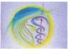 Dr. Manfred Politor Facharzt für Innere Medizin | Bodymed