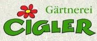 Gärtnerei Cigler - Markus Cigler