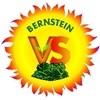 Volksschule Bernstein