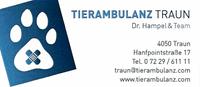 Dr. Herwig Hampel & Team TIERAMBULANZ TRAUN, Tierarzt für Kleintiere