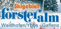 SKIGEBIET Forsteralm