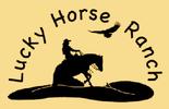 LUCKY HORSE RANCH, Westernreiten auf der Mühlviertler Alm. Ausbildung für Reiter und Pferd, Einstellplätze in Schönau im Bezirk Freistadt.
