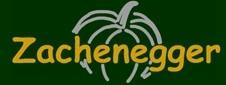 Zachenegger