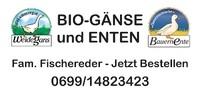 Bio Bauernhof Fischereder Ziegen - Weidegänse - Enten