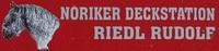 Rudolf Riedl Noriker Deckstation - Kutschfahrten