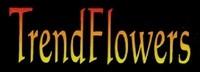 Trendsflowers Andre Stellingwerf