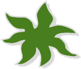 Candussi | Ihr Haus & Gartendienstleister