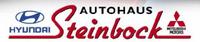 Betrieb (Autohaus Steinbock GmbH)