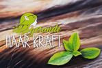 Monika Grasser | gesunde Haar Kraft - Bio Friseur