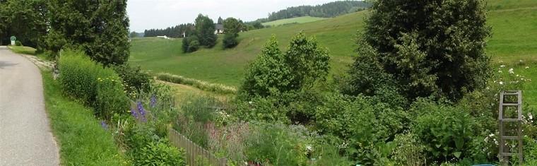 Kräutergarten (1)