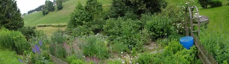 Kräutergarten (2)