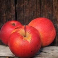 Saftige Mostäpfel