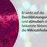BEMER Int AG – Wartezimmer TV deutsch