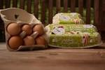 Bio Freiland Eier