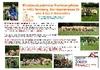 Kinderakademie Partnerpfote in Ternberg von 4. bis 5. November