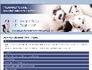 Attraktive Homepages und Accounts Oktober