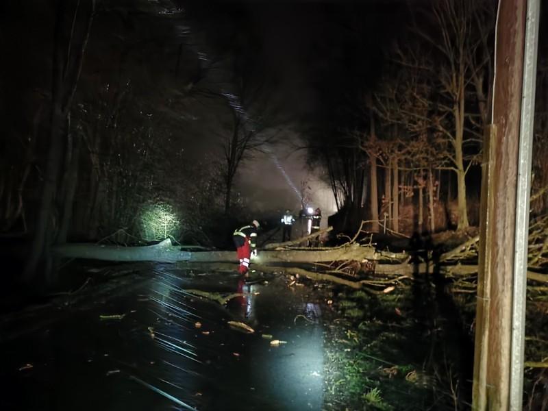 Einsatz: Baum auf Stromleitung & Notstromversorgung Ortswasser