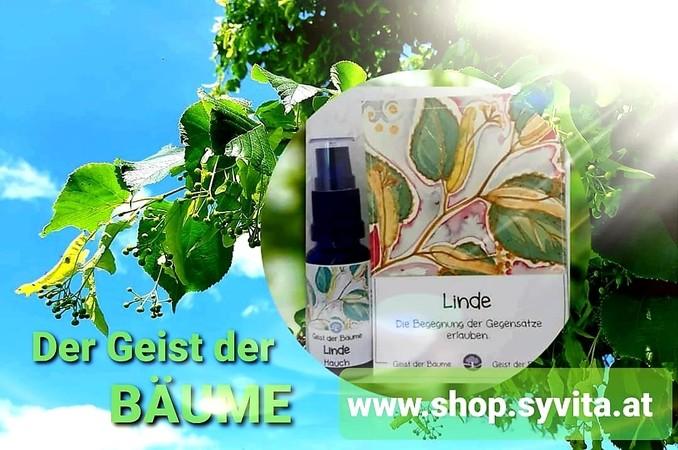 GEIST DER BÄUME I AURA Energie Sprays I SYVITA Neue Welt Online-Shop jetzt kaufen & bestellen!
