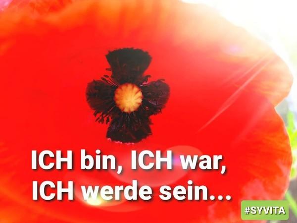 GedankenIMPULSE - ARACHAIflower - ICH bin, ICH war, ICH werde sein...