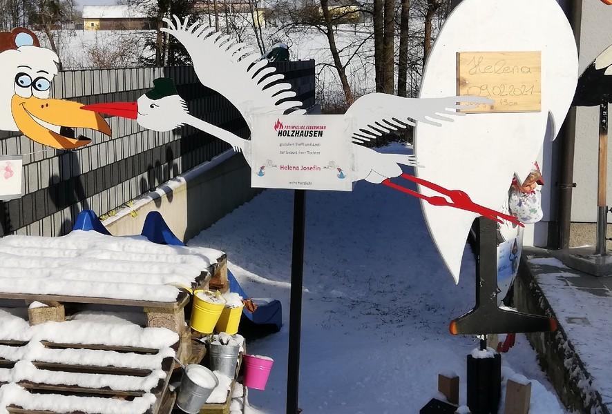 Storch aufstellen Andreas Hackl