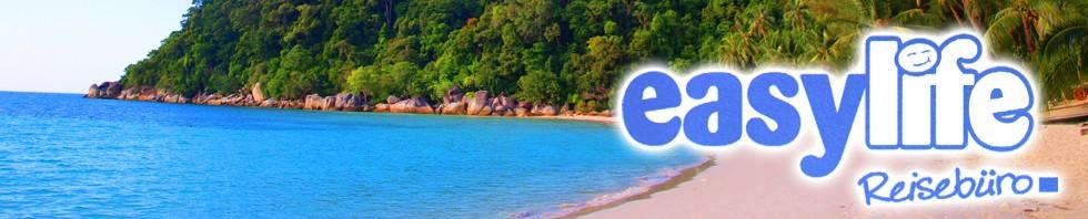 easy life banner