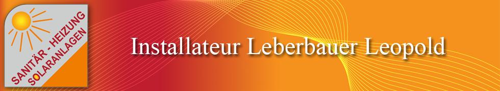 Leberbauer Banner