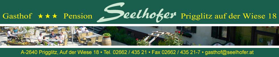 seelhofer Banner