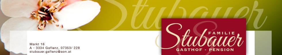 staubauer banner Kopie