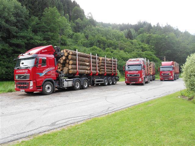 LKW Züge rot (1)