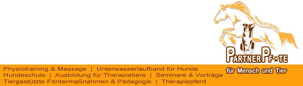 Partnerpfote banner NEU