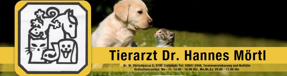 tierarzt banner