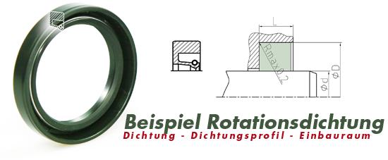 hydraulikRotationsdichtung