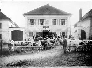 Alte Ansicht Gasthaus WEISS