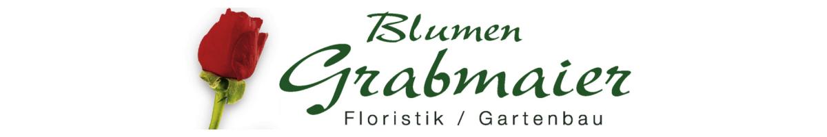 Logo 1200x200 b