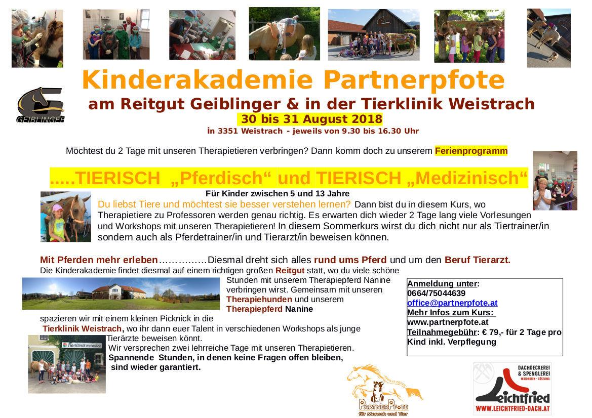 Kinderakademie Sommerprogramm 2018
