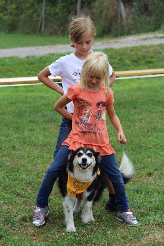 Therapiehund Luna