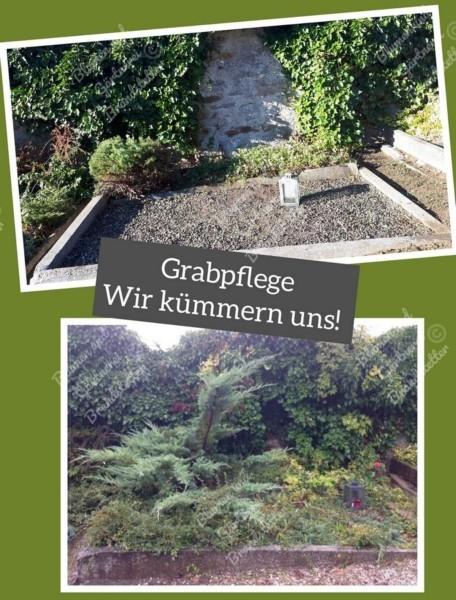 PhotoGrabpflege2